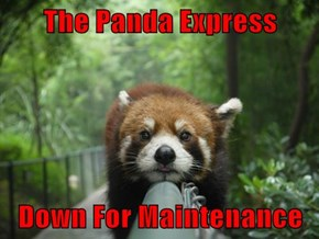 The Panda Express  Down For Maintenance