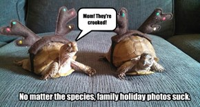 No matter the species, family holiday photos suck.
