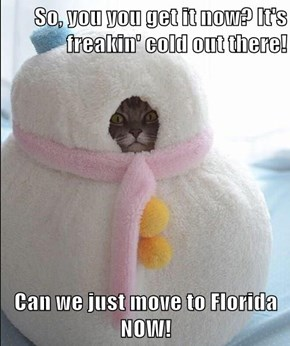 So, you you get it now? It's freakin' cold out there!  Can we just move to Florida NOW!