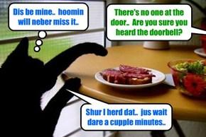 Kitties must outsmart dare hoomins to get all teh foods dey need..