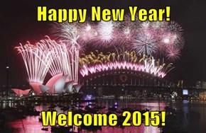 Happy New Year!  Welcome 2015!