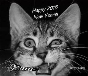 Happy 2015 New Years!