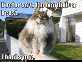 Doctor says I'm morbidly a beast.   Thanks doc.