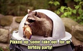 Happy Birthday kittyrefuge!