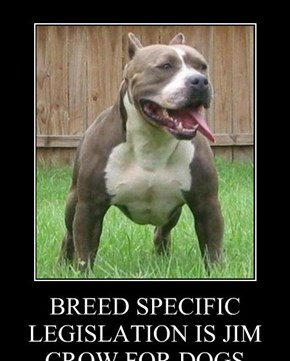 BREED SPECIFIC LEGISLATION IS JIM CROW FOR DOGS