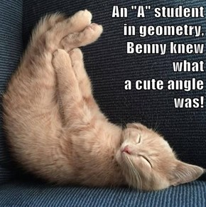 "An ""A"" student                                                                                 in geometry,                                                     Benny knew                                                                                what"