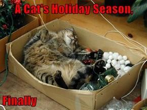 A Cat's Holiday Season,   Finally