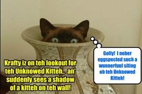 Krafty haz a clear siting of teh Unknowed Kitteh!