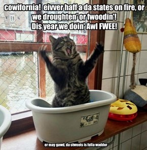 cowifornia!  eivver haff a da states on fire, or we droughten' or fwoodin'! Dis year we doin' Awl FWEE!