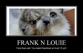 FRANK N LOUIE