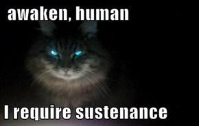 awaken, human  I require sustenance