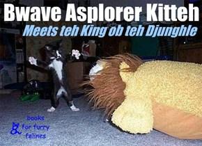 Bwave Asplorer Kitteh