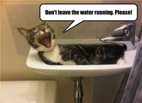 Don't leave the water running. Please!