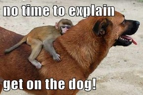 no time to explain  get on the dog!