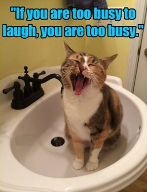 """""""If you are too busy to laugh, you are too busy."""""""