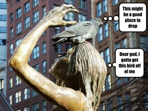 The Statue and the Bird