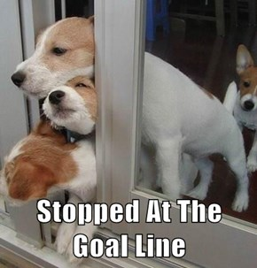 Stopped At The Goal Line