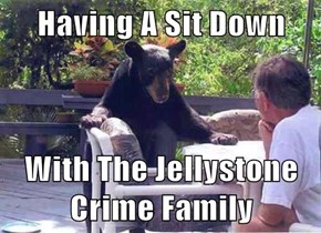 Having A Sit Down  With The Jellystone Crime Family
