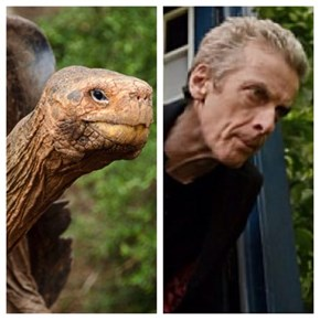 The Tardis is His Shell
