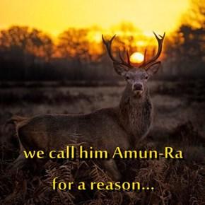 we call him Amun-Ra     for a reason...