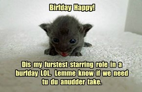 Happy (forgot the time difference) Birthday cat-a-lyst!