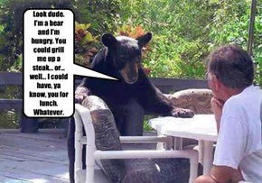 Look dude. I'm a bear and I'm hungry. You could grill me up a steak... or... well... I could have, ya know, you for lunch. Whatever.