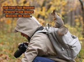 Squirrels. Not Even Once.
