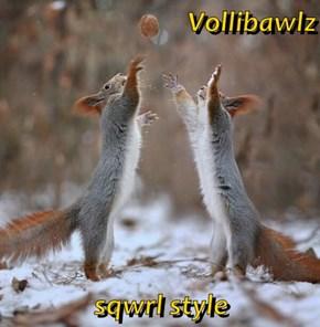 Vollibawlz  sqwrl style