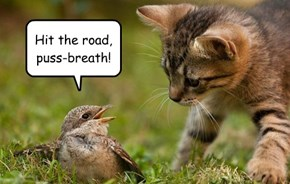 Hit the road, puss-breath!