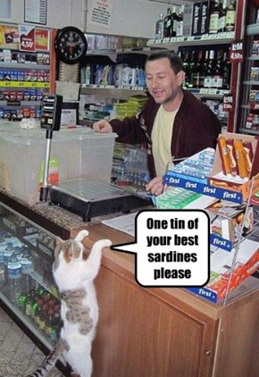 One tin of your best sardines please