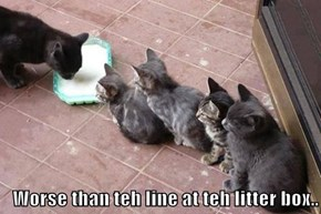 Worse than teh line at teh litter box..