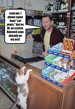 """Look pal. I dunno squat 'bout """"cat years,"""" but no ID, no scotch. Damned cops already on my ass!"""