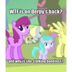 WTF is on Derpy's back?
