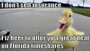 I don't sell insurance  I iz heer tu offer yu a great deal on Florida timeshares