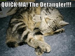 QUICK MA! The Detangler!!!