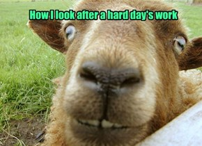 How I look after a hard day's work