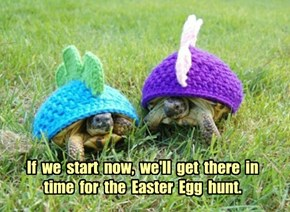 If  we  start  now,  we'll  get  there  in  time  for  the  Easter  Egg  hunt.