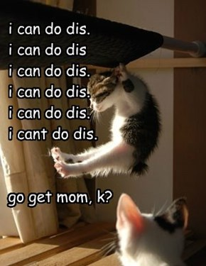 i can do dis. i can do dis i can do dis. i can do dis. i can do dis. i cant do dis.   go get mom, k?