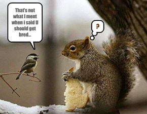 That's not what I ment when i said U should get bred...