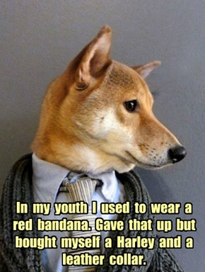 In  my  youth  I  used  to  wear  a  red  bandana.  Gave  that  up  but  bought  myself  a  Harley  and  a  leather  collar.