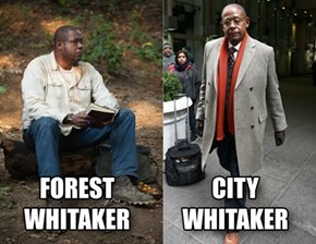 He Can Adapt to Any Whitaker