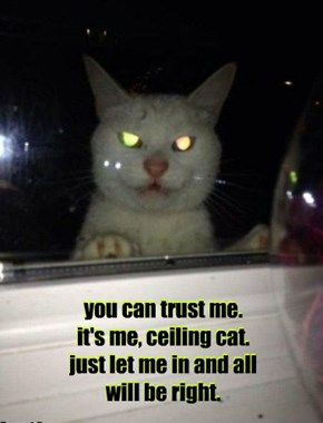 you can trust me. it's me, ceiling cat. just let me in and all will be right.