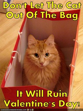 Don't Let The Cat Out Of The Bag   It Will Ruin Valentine's Day!