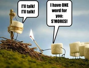 I have ONE word for you:  S'MORES!