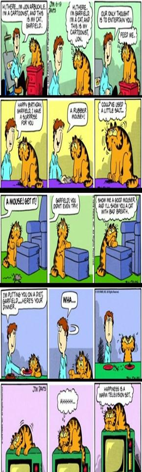 Garfield 1st 5 Strips