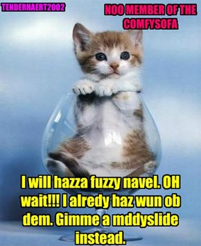 I will hazza fuzzy navel. OH wait!!! I alredy haz wun ob dem. Gimme a mddyslide instead.