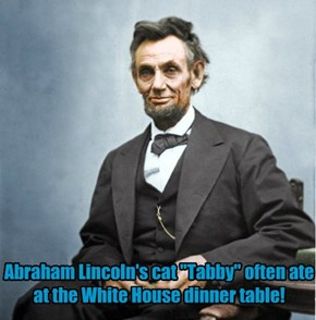 Little known fact about Abraham Lincoln