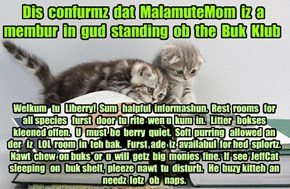 Offishul JeffCatsBookClub Memburship Kard for MalamuteMom