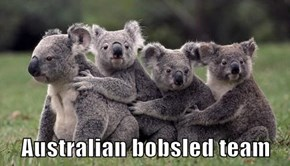 Australian bobsled team