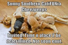 Sunny Southern CatiFUNia Cheezpeeps  Invited! Time n place 2 be determined. Not soon enuf.